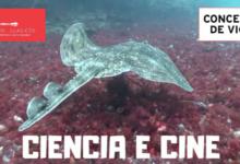 Ciclo de conferencias sobre Cíes: «Falemos das Illas Cíes»