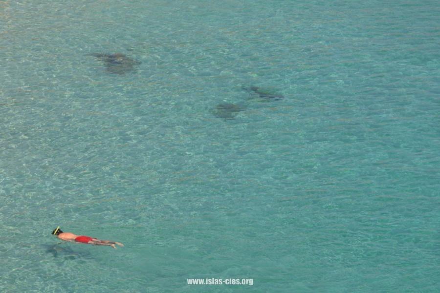 Submarinismo Islas Cíes
